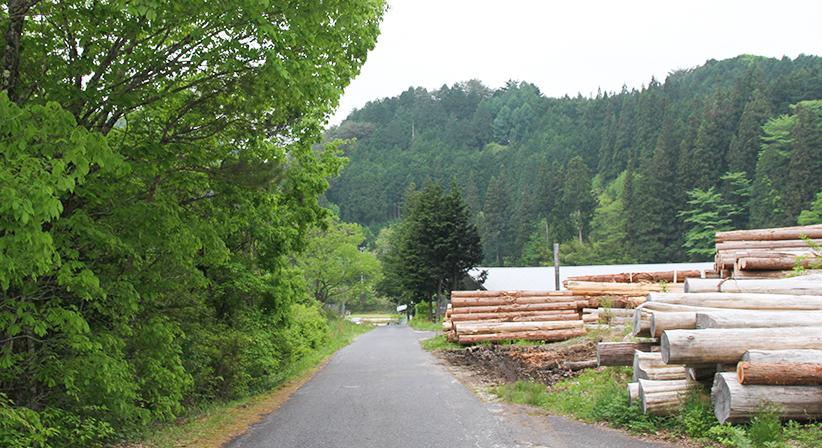 真っ直ぐ進んでいただくと、志水木材産業が見えます。