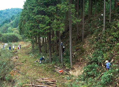 複層林は、水源かん養などの森林の有する機能が高度に発揮されることや大径木で年輪の詰まった高品質の材木に育てることができるそうです。